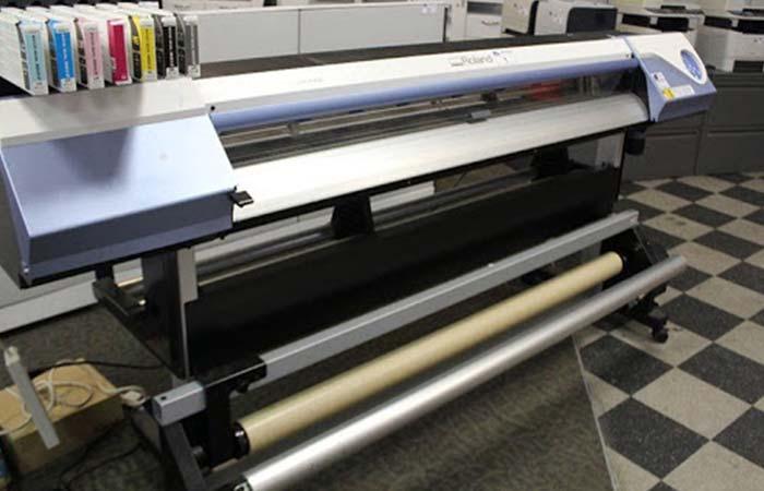 Vinyl Cut & Printing